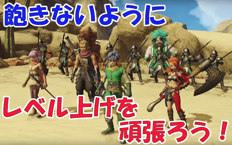 dragon-quest-heroes-2-level-up4