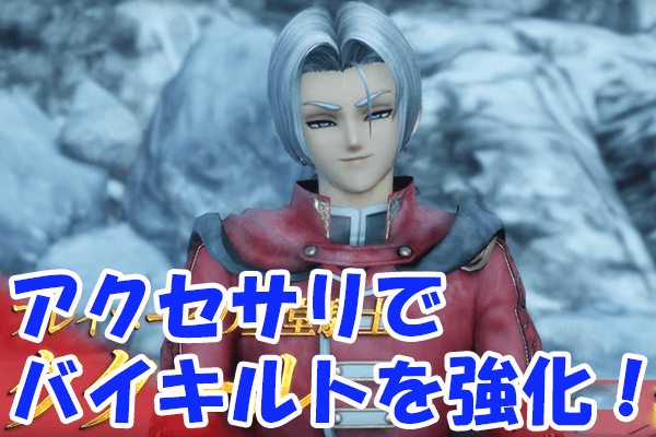 Dragon Quest Heroes 2 Members7